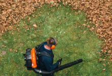 Photo of 4 Things You Should Know Before You Buy a Leaf Blower