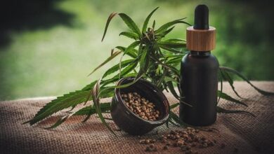 Photo of These Are the Different Types of CBD Oil