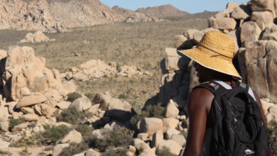 Photo of 5 Tips to Make the Most of a Visit to Joshua Tree National Park