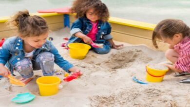 Photo of How To Choose The Best Sand for Sandbox – Complete Guide to Buying