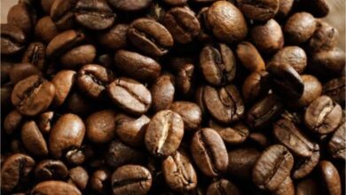 Photo of Why is Arabica Coffee So Special?